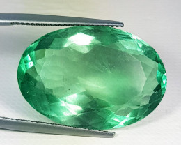 20.98 ct Excellent Gem  Oval Cut Natural Green Fluorite