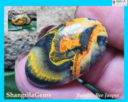 28mm BumbleBee Jasper AAA quality 17.5ct 25 by 16 by 4.5mm from Indonesia