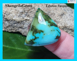 26mm Tibetan turquoise cabochon free form 26 by 20 by 7mm 29ct
