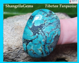 31mm Tibetan turquoise cabochon free form 31 by 25 by 6mm 32ct