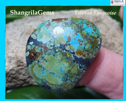 30mm Tibetan turquoise cabochon free form 30 by 24 by 4.5mm 21ct