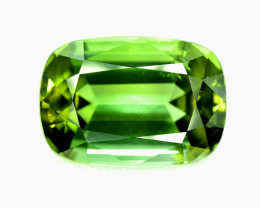 12.60 Carats Natural Top Grade Tourmaline Gemstone