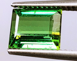 NR! Unheated 2.75 CT Intense Green Tourmaline (Kunar) $475