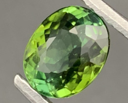 """NR""1.75Cts Top Quality Natural Amazing Green Tourmaline"