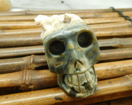 Ocean jasper carving skull with chameleon decoration (S028)
