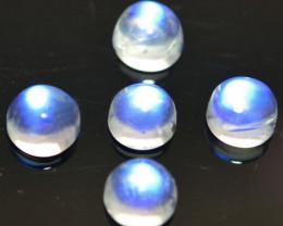 1.02 Cts Natural Royal Blue Moonstone 3.5mm Round-Cab 5Pcs Bihar-India