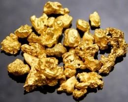 DEALERS PARCEL AUSTRALIAN  GOLD NUGGET 5  GRAMS  LGN550