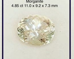 Luminous 4.85ct Soft Peach Oval Morganite G311