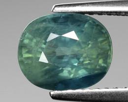 3.46 Cts Blue Sapphire Sparkling Intense SA7