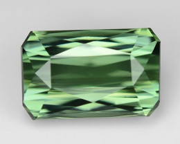 AAA Grade 2.59 Cts Sparkling Tourmaline ~ Afghanistan TR16
