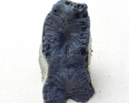 AAA Blue Coral Gemstone Specimen,Blue Coral,Gemstone Rough E393