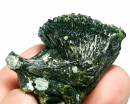 Amazing damage free Flower tree shape Epidote cluster specimen 215Cts-P
