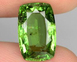 2.96 Cts Untreated Copper Bearing Green Color Natural Paraiba Tourmaline