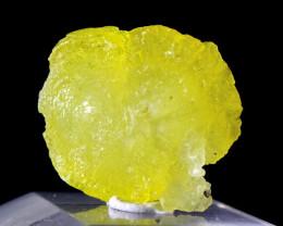29.50 CT Natural Unheated Rare Yellow Brucite Specimen
