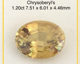 Lovely Luminous  Chrysoberyl -  Brazil, EBA02 H725