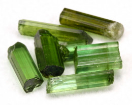 Tourmaline 7.28Ct 7Pcs Natural Green Color Tourmaline Lot D1222