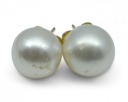 11mm White South Sea Pearl Earrings in 14kt Yellow Gold