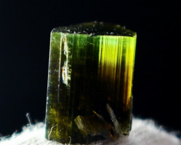 9.20 Cts Beautiful, Superb  Green  Cap Tourmaline Crystal
