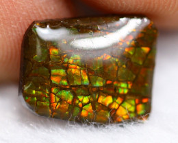 3.34ct Natural Canadian Ammolite / Ammonite Lot V8217