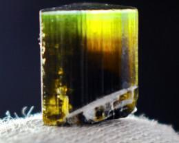 16.35 Cts Beautiful, Superb  Green  Cap Tourmaline Crystal