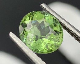 """NR"" 3.70 Cts Top Quality Parrot Green Color Natural Tourmaline"