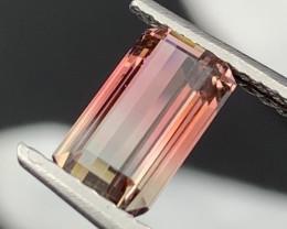 """""""NR"""" 2.80 Carats Top Quality Natural Bi Color Tourmaline"""