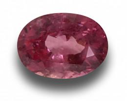 Natural Pink Sapphire|Loose Gemstone|New| Sri Lanka