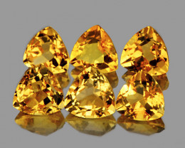 6.00 mm Trillion 6 pcs 3.71cts Yellow Citrine [VVS]