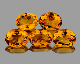 8x6 mm Oval 5 pcs 6.08cts Golden Yellow Citrine [VVS]