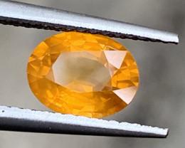 1.65 Carats Yellow Sapphire Gemstones