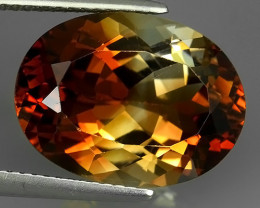 12.40 CTS SUPERIOR! CHAMPION TOPAZ GENUINE OVAL