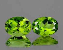 8x6 mm Oval 2 pcs 2.78cts Green Peridot [VVS]