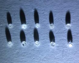 0.04 ct 10 x D-N i1-pique single cut diamonds