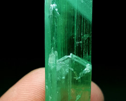 Amazing Damage free Double termination  gemmy Hiddenite Crystal 75Cts-A