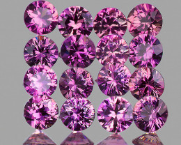 2.40 mm Round 16pcs 1.07cts Unheated Lavender Pink Sapphire [VVS]
