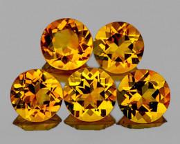 7.00 mm Round 5 pcs Golden Yellow Citrine [VVS]