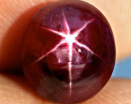 7.73 Carat Fiery Star Ruby - Beautiful