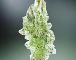 Hedgehog from Besednice Natural Moldavite quality A+/++ with CERTIFICATE