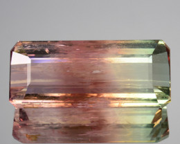 14.58 Cts Natural Bi-Color Watermelon Tourmaline Octagon Cut Mozambique