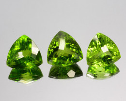 36.43 Cts Natural Peridot Parrot Green Trillion Pakistan Set