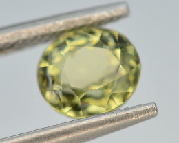 Top Color 1.20 ct Natural Green Color Tourmaline ~ ABS
