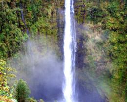 700 foot Akaka Falls, Big Island, Hawaii.
