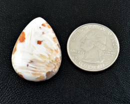 Genuine 31.00 Cts Flower Agate Cabochon