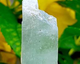 78cts Bi color Kunzite crystal Specimen Afghanistan