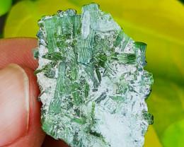 28.5ct Multi Terminated Green Tourmaline with Quartz Shigar Pakistan
