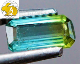 VVS! BICOLOR! Green-Blue Tourmaline (Brazil) | FREE TRACKED SHIPPING!
