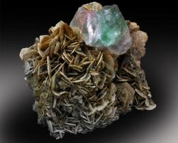 Fluorite Specimen , Bicolor Fluorite Crystal on Muscovite Mica from Gilgit