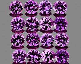 2.20 mm Round 16 pcs Lavender Purple Sapphire [VVS]
