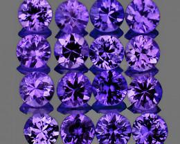 2.00 mm Round 20 pcs Unheated Purple Sapphire [VVS]
