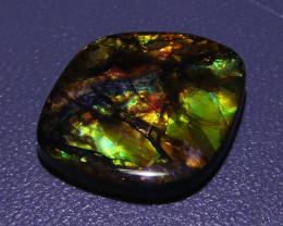 6.36ct Ammolite Alberta, Canada- $1 NR Auction